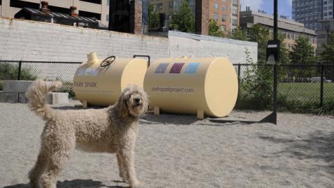 Un proyecto usará excrementos de perro para alumbrar la ciudad