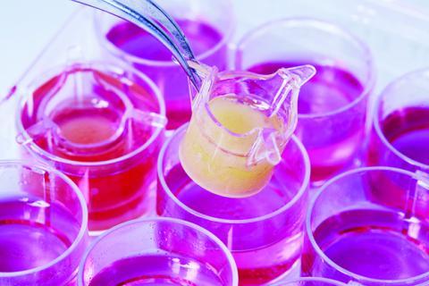 Nueva tecnología para fabricar vasos sanguíneos artificiales