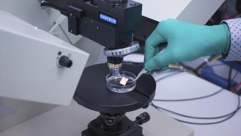 Un sensor de grafeno para acelerar el desarrollo de medicinas