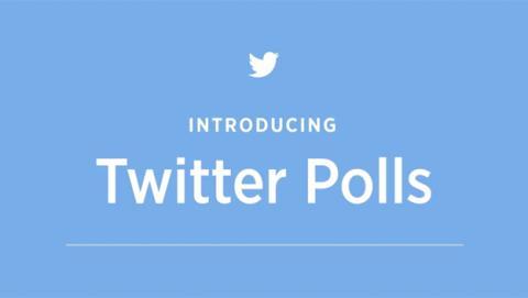 Twitter lanza Polls, su herramienta para hacer encuestas