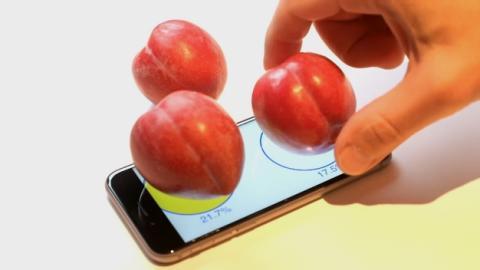 Usan la pantalla 3D Touch del iPhone 6s como báscula para pesar ciruelas.