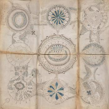 El códice Voynich, el libro más raro del mundo, se copiará en Burgos
