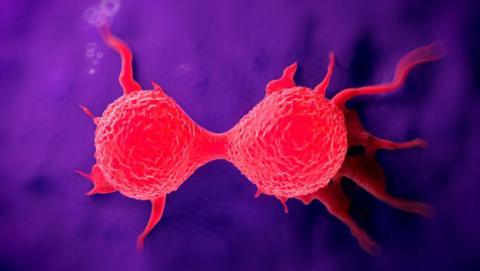 Nueva forma para detectar y eliminar el cancer