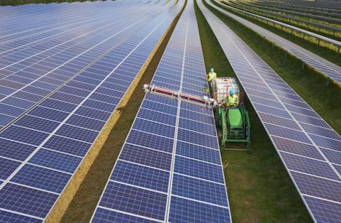 Rechazan una granja solar para que no gaste todo el sol