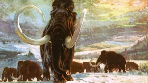 Recuperación del mamut mediante modificación del ADN