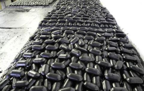 Coalgae, el combustible ecológico