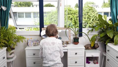 Plantas para tener un aire puro en casa, según la NASA