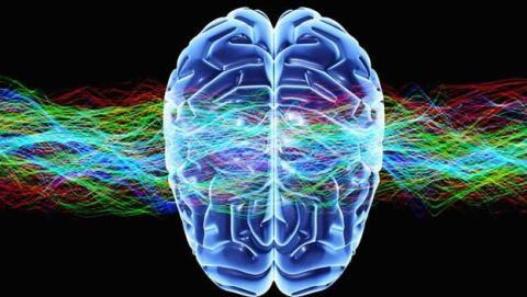 neurociencia leer pensamiento