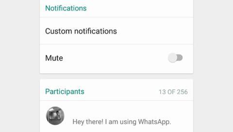 Grupos de WhatsApp con 256 participantes