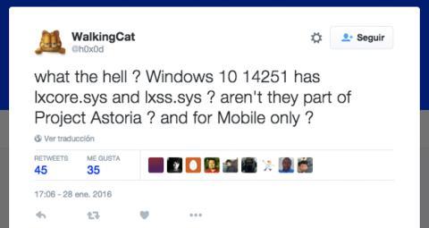 Tweet de WalkingCat sobre archivos de Linux en Windows 10