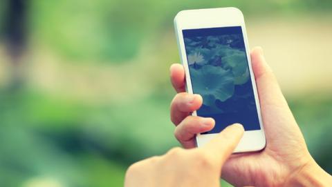 Bloqueo de los iPhone de Apple con el Error 53