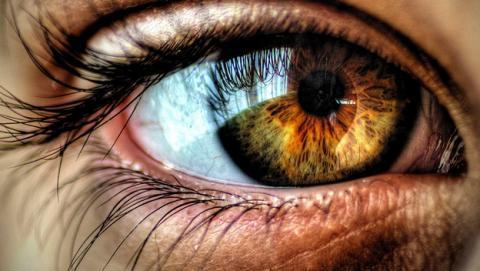 La optogenética puede devolver la vista a personas ciegas