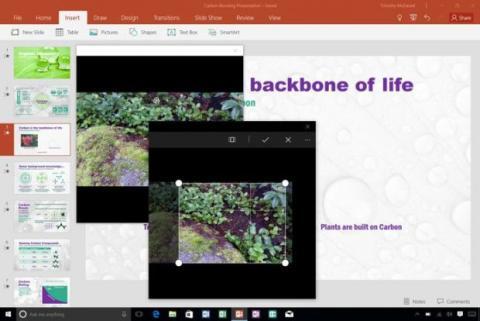 fotos Office 365