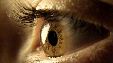 Las células madre devuelven la vista a una paciente