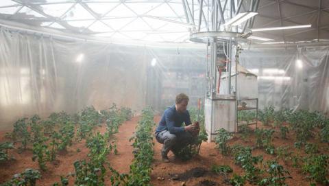 Cultivar verduras y hortalizas en Marte ya es posible