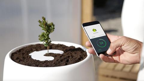 Bios Incube te convierte en un árbol después de la vida
