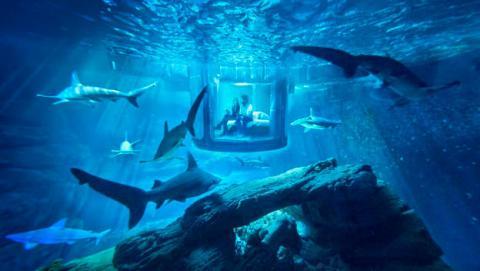 noche tiburones aribnb