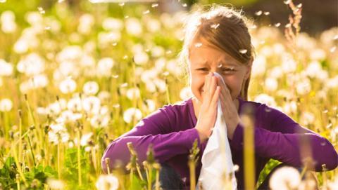 La vacuna universal para la alergia, un paso más cerca
