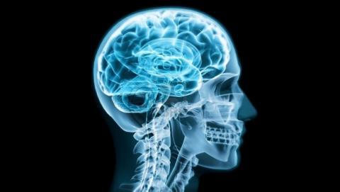 El sonido de tu cráneo, lo último en contraseñas biométricas