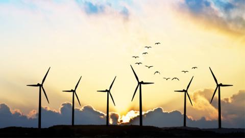 Alemania logra autoabastecerse sólo con energías renovables