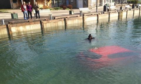 Conductora termina en el fondo de un lago por seguir el GPS