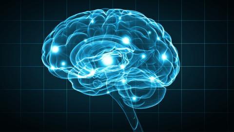 Implantes cerebrales nos permitirán controlar el ordenador