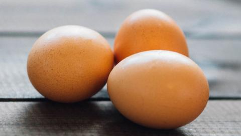 cascara de huevo bateria