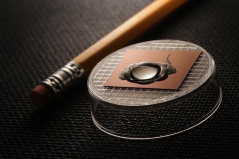 Chip biosensor de grafeno para diagnosticar enfermedades