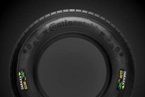 Neumáticos de diente de león