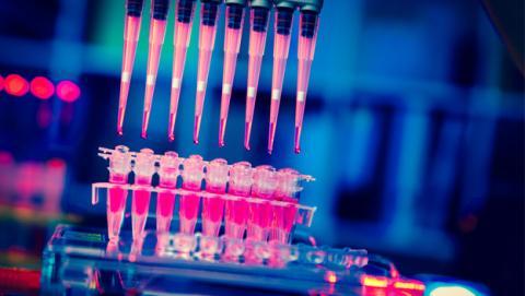 Las vacunas programables, un paso más contra el cáncer | Imagen: Shutterstock