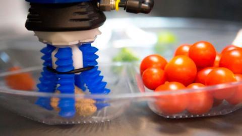 robotica suave o blanda
