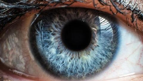 Córnea sintética devolvería la vista a personas