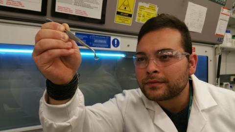 Córnea sintética