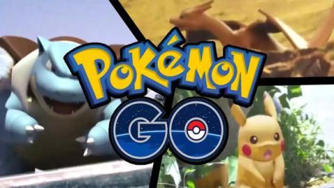 Nido Pokémon