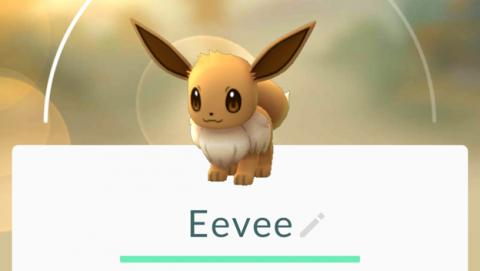Escoge a qué evolucionará Eevee en Pokémon GO de este modo