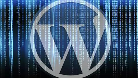 Vulnerabilidades wordpress