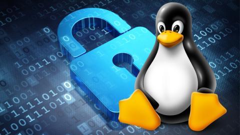 Distros seguras de Linux