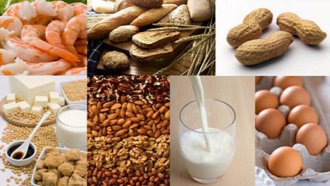 Nueva inmunoterapia revertiría alergias alimentarias