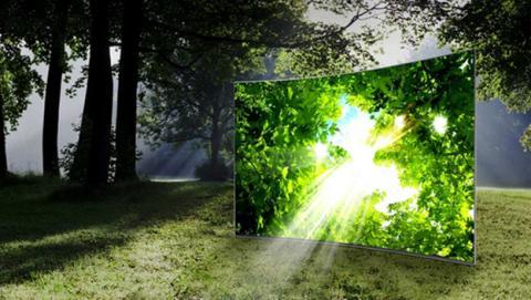 Televisor curvo