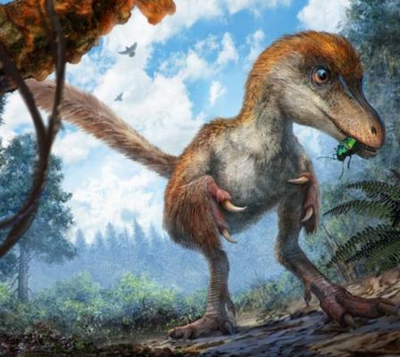 Encuentran plumas completas en la cola de un dinosaurio fosilizado