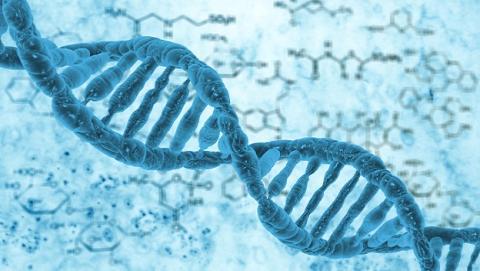 Mejoran la herramienta de edición genética CRISPR