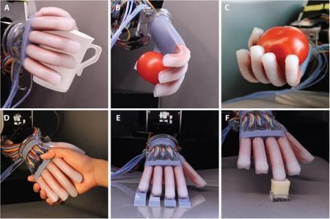 Tareas con mano robótica