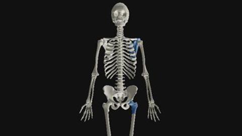 El 3D nos muestra cómo evolucionarán los huesos en 4.000 años