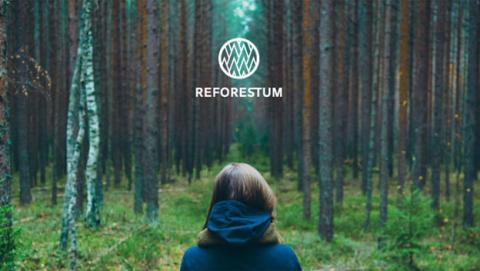 Compensa el CO2 que generas creando tu propio bosque con Reforestum