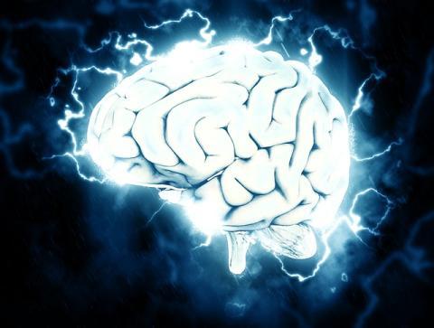 3 sencillas claves de Harvard para evitar el deterioro cognitivo