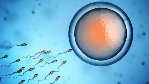 anticonceptivo masculino