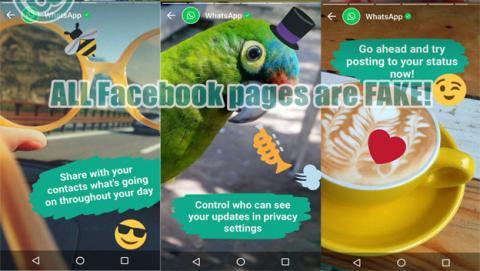 Los WhatsApp Status se pueden personalizar con dibujos, texto e incluso stickers