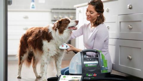 lavar perro