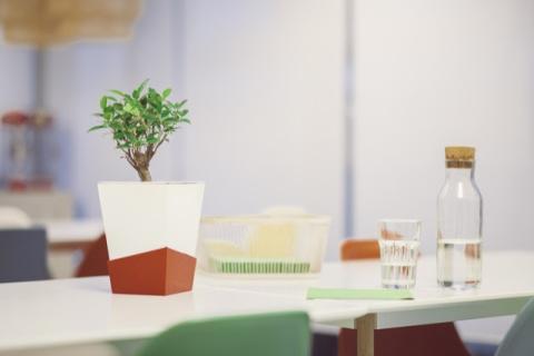 La maceta inteligente que riega las plantas cuando no estás en casa