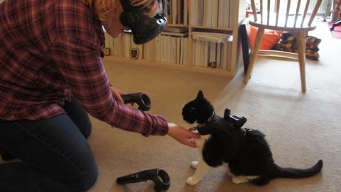 Cómo no pisar a tu gato cuando usas la realidad virtual